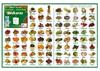 """Affiche """"les fruits et légumes"""" pour apprendre l'euskara"""